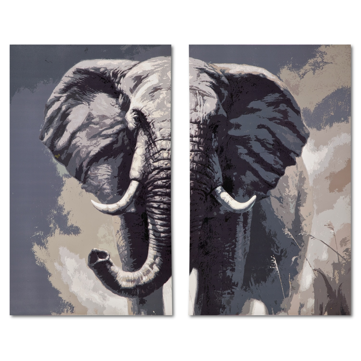 Home Accessories - Elephant 2-Piece Canvas Print