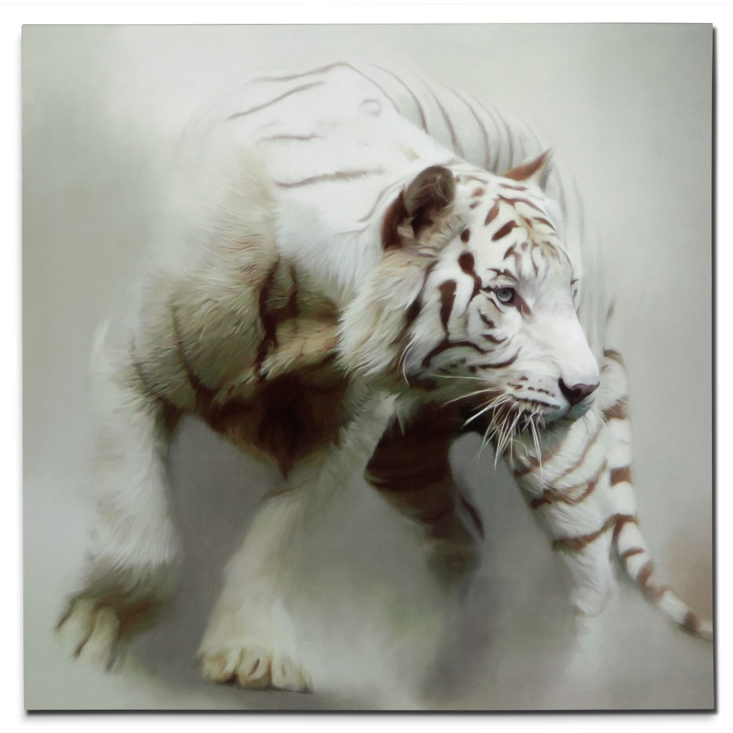 White Tiger Canvas Print Value City Furniture
