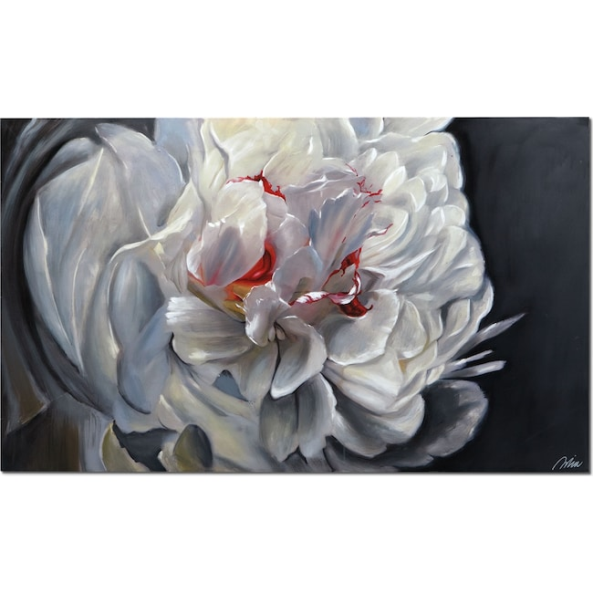 Home Accessories - Floral Elegance Canvas Print