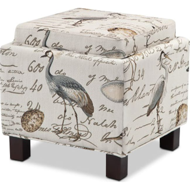 Accent and Occasional Furniture - Hayes Storage Ottoman with 2 Pillows - Birds
