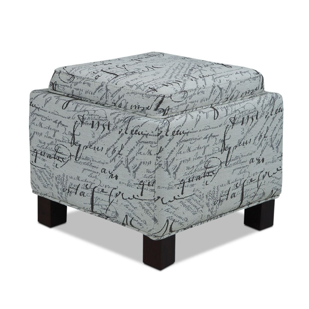 Hayes Storage Ottoman with 2 Pillows - Script