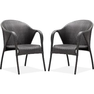 Panama 2-Piece Outdoor Arm Chairs - Espresso