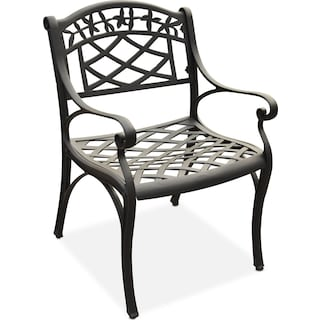 Hana Outdoor Arm Chair - Black