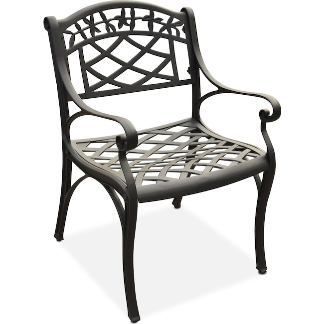 Outdoor Furniture - Hana Outdoor Arm Chair - Black