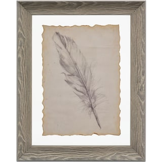 Feather Framed Print II