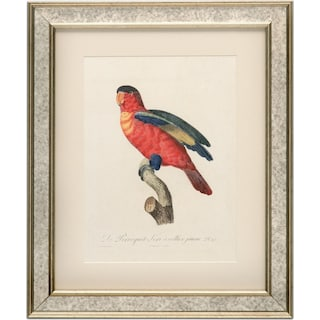 Tropical Bird Framed Print - Red