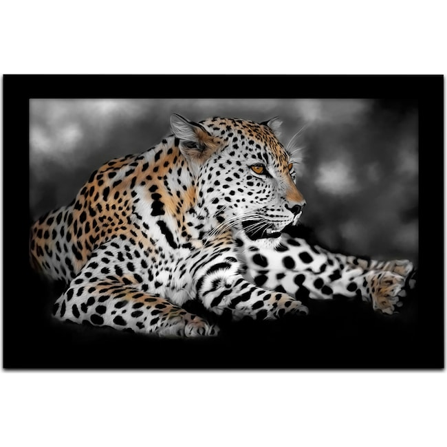 Home Accessories - Spotted You Framed Print