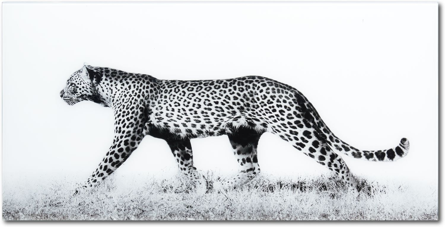 Home Accessories - Fearless Leopard Wall Art 2