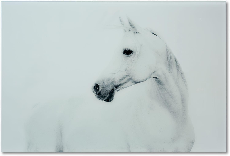 Home Accessories - Blanco Mane Stallion Wall Art