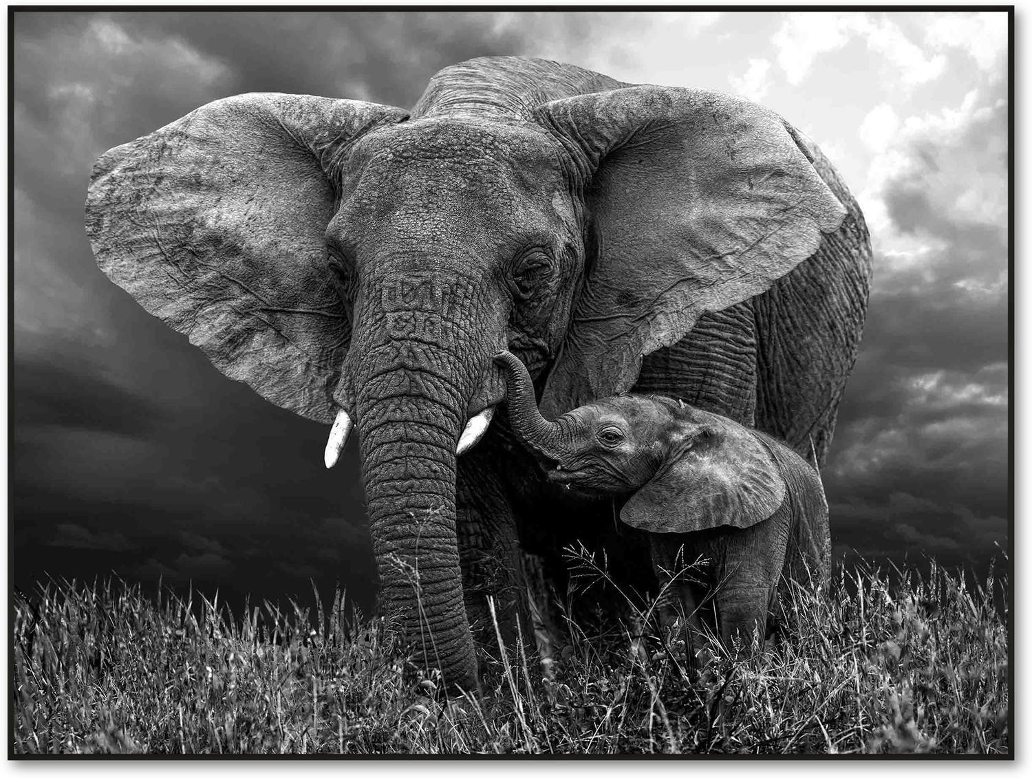 Home Accessories - Elephant Mother and Baby Wall Art