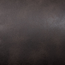 dark brown swatch